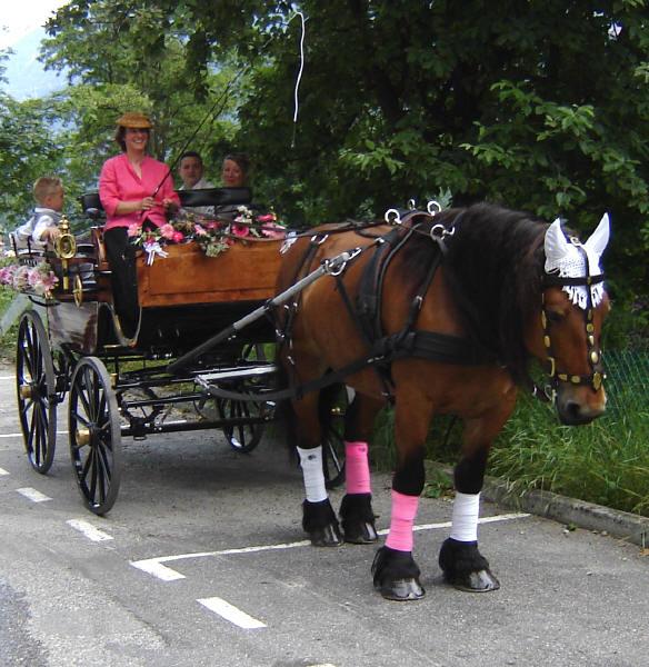 mariage en calche mariage en calche - Mariage En Caleche